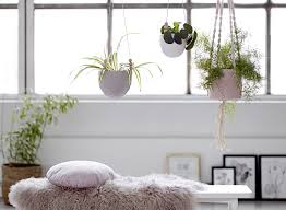 Hanging plant bloomingville 2015