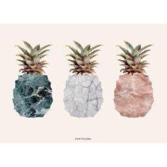 Vontrueba_pineapples